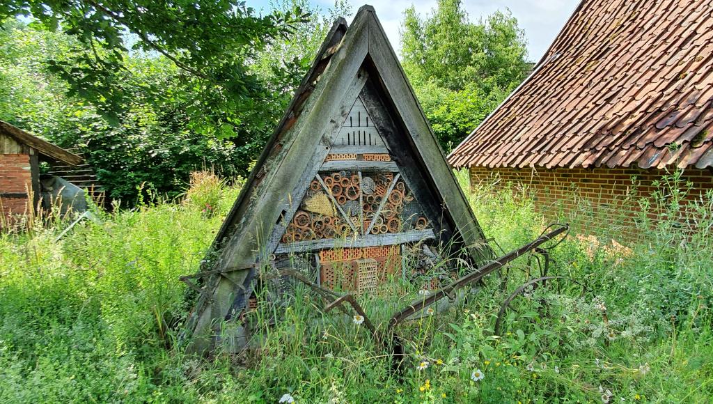 Permalink auf:Insektenhotel und Blumenwiese